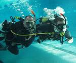 PADI Courses - Scuba Diver Course - Diving Lessons - three