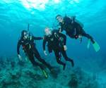 Scuba Diving With Disabilities | Disabled Scuba Diving - four