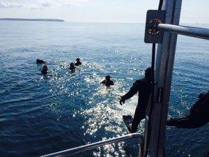 Wreck Diving Week in Plymouth
