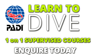 PADI Open Water referral course in Essex and Herts