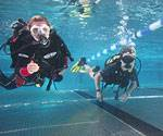 PADI Open Water Course - Pool