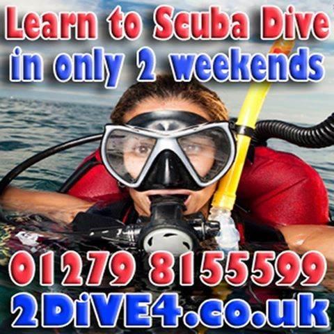 Learn to Scuba Dive in 2 weeks